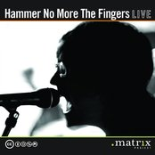 Hammer No More The Fingers Live at the dotmatrix project