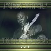 Muddy Waters The Blues Icon Volume 1
