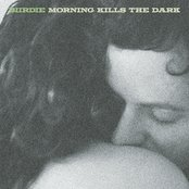 Morning Kills The Dark