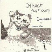 The ChinaCat EP