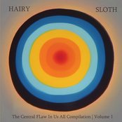 "Various Artists | Hairy Sloth Records - ""The Central FLaw In Us All Compilation Volume #1"""