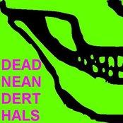 Dead Neanderthals