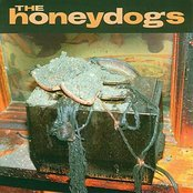 The Honeydogs