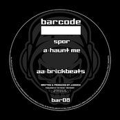 Haunt Me / Brickbeats