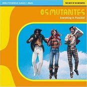 Everything is Possible! The Best of Os Mutantes