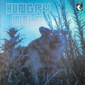 Hungry Wolf