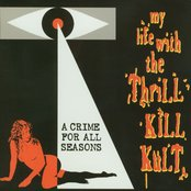 A Crime For All Seasons