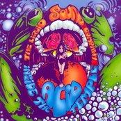 Inside the Acid Temple