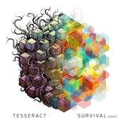 Survival (Errai)