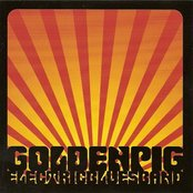 Golden Pig Electric Blues Band