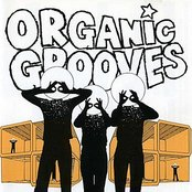 Organic Grooves 4- Live in NYC