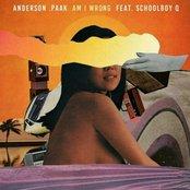 Am I Wrong (feat. ScHoolboy Q) - Single