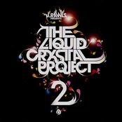 The Liquid Crystal Project II
