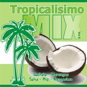 Tropicalisimo Mix Vol. 8