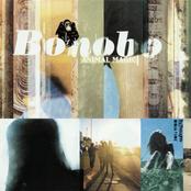 album Animal Magic by Bonobo