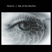 Eye of the Nautilus