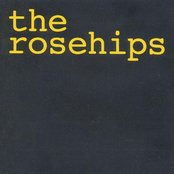 The Rosehips