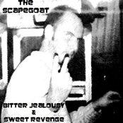 Bitter Jealousy & Sweet Revenge