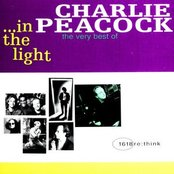 In The Light - The Very Best Of...