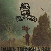 Falling Through A Field (Reissue)