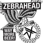 Way More Beer