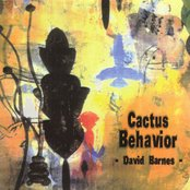Cactus Behavior