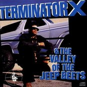 Terminator X & The Valley Of The Jeep Beats