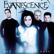 album Not for Your Ears by Evanescence