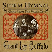 Storm Hymnal : Gems From The Vault Of Grant Lee Buffalo