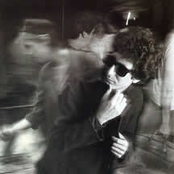 b59502e00d Stan Ridgway - Camouflage Lyrics