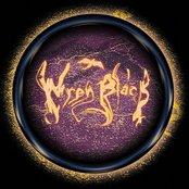 Dark Psychedelic Inc.