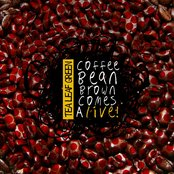 Coffee Bean Brown Comes Alive!