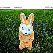 In A Coma - The Best of Matthew Good 1995 - 2005