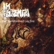 The Transformed Lay Fire