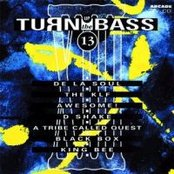 Turn Up the Bass, Volume 13