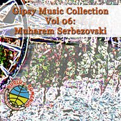 Gipsy Music Collection Vol 06: Muharem Serbezovski:  Live in Restaurant - Gypsy Magic