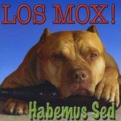 Habemus Sed