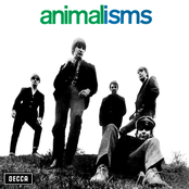 Animalisms cover art
