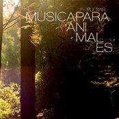 MUSICA PARA ANIMALES