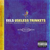 Useless Trinkets: B-Sides, Soundtracks, Rarities and Unreleased: 1996-2006