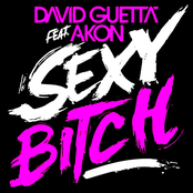 Sexy Bitch (feat. Akon) - Single