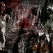 An Awakening of Revenants