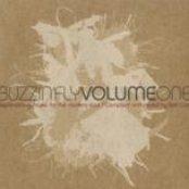 Buzzin' Fly, Volume 1 (Mixed by Ben Watt)