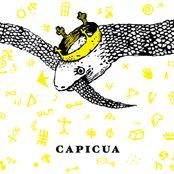 CAPICUA