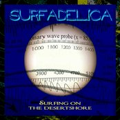 Surfing On The Desertshore (2008)