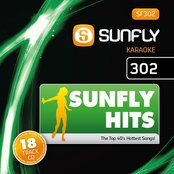 Sunfly Hits, Vol. 302
