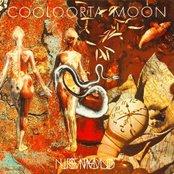 Cooloorta Moon