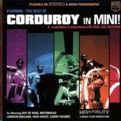 Corduroy in Mini!