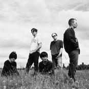 Radiohead The Kings Of Limbs Lyrics Metrolyrics