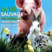 La vie sauvage des animaux domestiques (Bande originale du film)